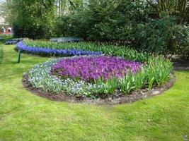 Mieszana obwódka z roślin cebulowych (Holandia)