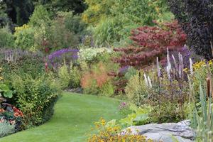 Kolory jesieni mogą być naprawdę ekscytujące