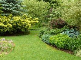 Widoki na rozległy trawnik z falującymi rabatami bylinowymi