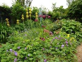 Różnorodność kwiatów na każdym kroku