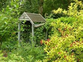 Ogródek zaprojektowany przez Sue Hamilton jako oaza ciszy i spokoju.