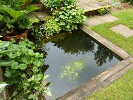 Sporo w tym ogrodzie stawów i urokliwych elementów wodnych