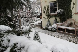 Ogród w grudniu może być ze śniegiem...