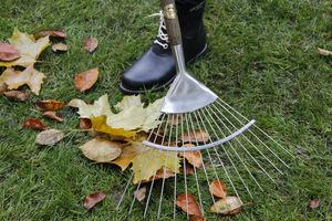 Grabimy liście z trawnika