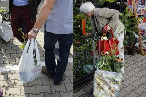Co kupowali ogrodnicy?