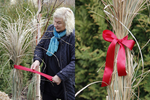 Trawy powiązane sznurem dodatkowo ozdabiamy kokardami