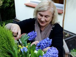 Czyszczenie przekwitniętych kwiatostanów
