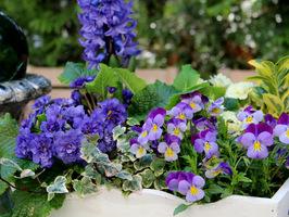 Efektowna dekoracja wiosenna