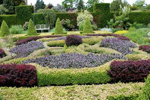 Skomplikowany ogród węzłowy z kolorowych ziół, bylin, okolony bukszpanem