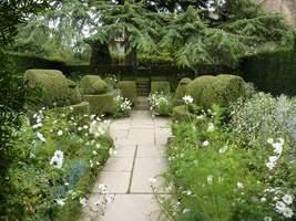 White Garden. na rabatach wyższe krzewy bukszpanu uformowano w siedzące ptaki