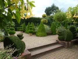 Dutch Garden, szereg rabat i zakątków z fantazyjnymi bukszpanami