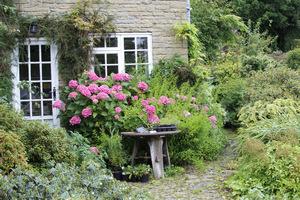 Uroczy przykład ogrodu wiejskiego z hortensjami