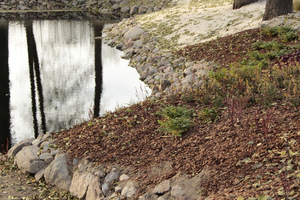 Wyłowienie liści z tak dużej powierzchni może być problemem