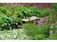 Piękna i bujna roślinność z przewagą pierwiosnków
