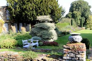 Widok na lewą stronę ogrodu i malowniczy dereń