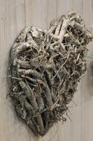 Serce z pobielonych korzeni