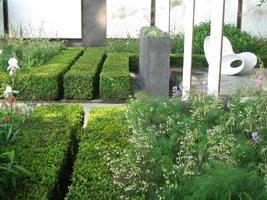 Potrójny żywopłot w nowoczesnym ogrodzie