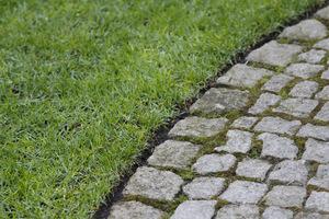 Przycięte kanty trawnika sprawiają, że ogród wygląda na super zadbany