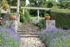 Kamienne schody, donice, bujna zieleń wspinająca się na pergole