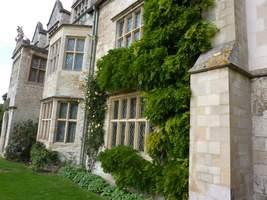 Ściany opactwa porastają ogromne okazy róż i innych pnączy (tutaj Wisteria)