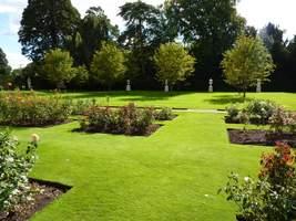 Ogród formalny z różami