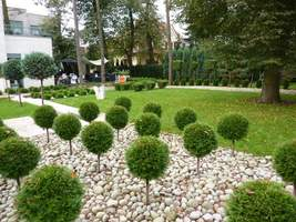 Drugi, super nowoczesny ogród
