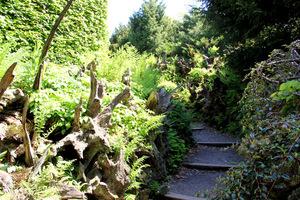 Pierwszy tego typu ogród w Anglii - Bidulph Grange