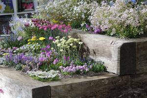 Rabata do kolekcjonowania roślin poduchowych zbite z grubych bali drewnianych