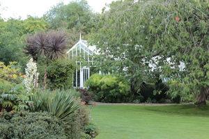 Szklarnia wolnostojąca ukryta w ogrodzie