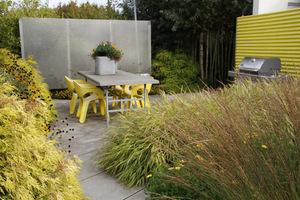 Żółte meble pasują do żółtych roślin