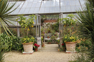 Ogrodnik może uprawiać praktycznie wszystko, co mu się tylko zamarzy