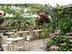 Szklarnia jako zaplecze ogrodu, jadalnia a nawet restauracja