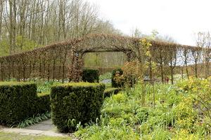 Wejście do ogrodu leśnego pod łukiem z grabu