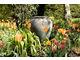 Pomarańczowe tulipany z wazą