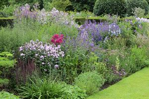 Ogród to nie tylko rośliny i ich połączenie, ważne jest też umiejętne ich dobranie w stosunku do warunków siedliskowych