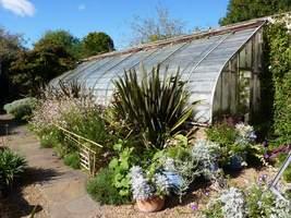 W tym ogrodzie spodobała mi się bardzo mała szklarnia z ciekawymi roślinam