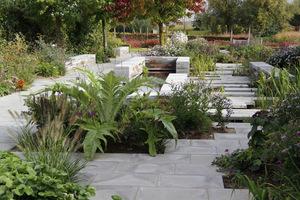 W wolnych miejscach wyrastają zarówno rośliny ozdobne jak i warzywa (karczoch)