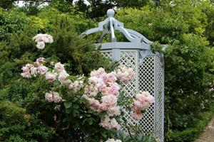 Altana z różami