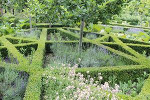 Skomplikowane obwódki bukszpanowe na wzór ogrodów francuskich