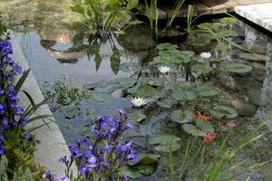 Tafla wody jako zwierciadło ogrodu