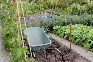 Najlepsza siłownia ogrodowa? - kopanie dołów