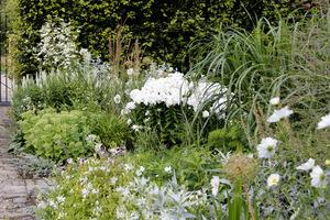 Biel i zieleń - elegancja ogrodowa