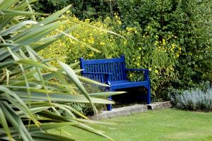 Klasyczna ławka angielska w kobaltowym kolorze, z tyłu bladożółte słoneczniczki