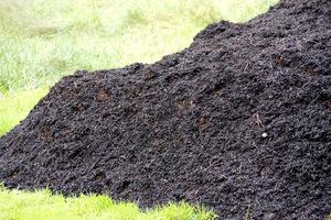 Jest niezwykle bogatym pokarmem organicznym dla roślin i gleby. Może być wykorzystywany do użyźniania oraz jako ściółka