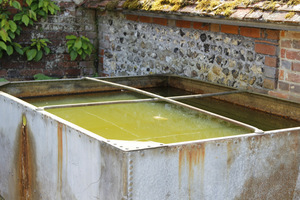 W pobliżu kompostu dobrze jest umiejscowić zbiornik z wodą, najlepiej deszczówką