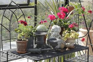 Pomiędzy roślinami ustawiłam liczne drobiazgi i popiersia
