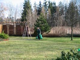 Zgrabione i zdrowe liście wynosimy na kompost