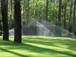Automatyczne nawadnianie jest idealnym rozwiązaniem w kwestii podlewania trawnika