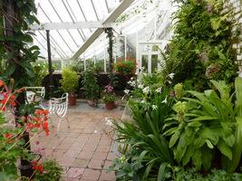 Domowa oranżeria to luksusowe wydanie szklarni. Rosliny są tu odpowiednio zakomponowane. Nie tylko zimują, ale też zdobią. Można odpocząć wśród kwiatów, gdy za oknami śnieg
