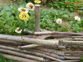Pierwsze rośliny posadzono w maju 2008 roku
